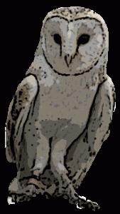 pepito conejo