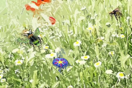 Cuentos cortos: La abeja y la flor prohibida