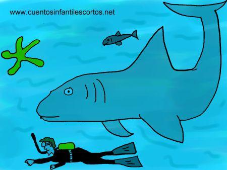 Cuentos cortos - el tiburon bueno de la playa
