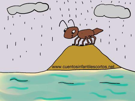 Cuentos infantiles - Tip, la Hormiga curiosa