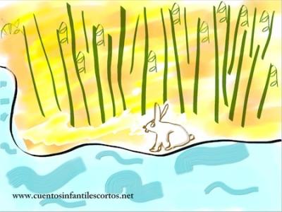 cuentos-conejo-bambu