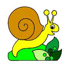 el-caracol-florencio-cuentos-infantiles-cortos